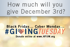 2013-Wordpress---GivingTuesday